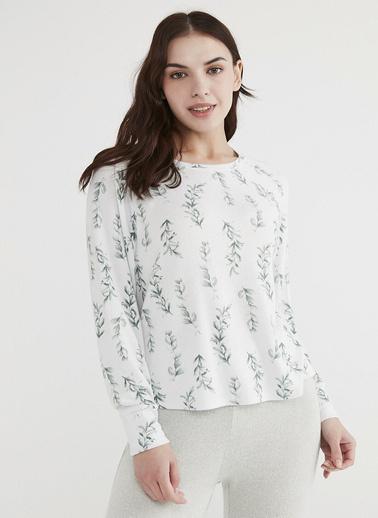 Penti Sweatshirt Renkli